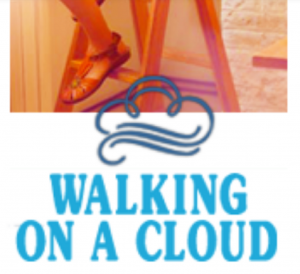 Buy Shoes Online from Walking on a Cloud